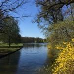 Zulauf zum Badenburger See